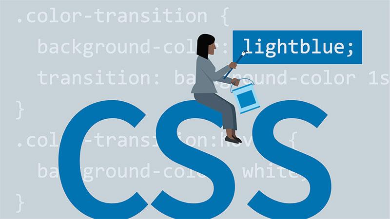 Tuỳ chỉnh CSS trên WordPress